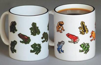 mug-frogs